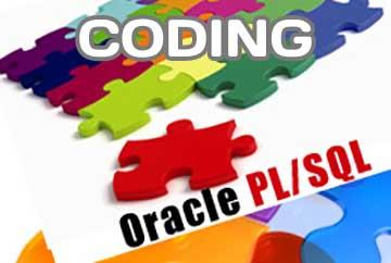 How to start coding on PL/SQL for Oracle Databases for novices?