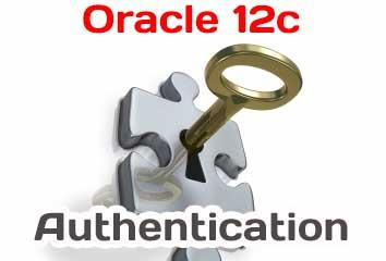 aBasic Oracle Database 12c Security