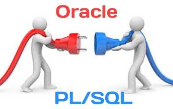 Working with Oracle from PL/SQL: connect, login & execute code