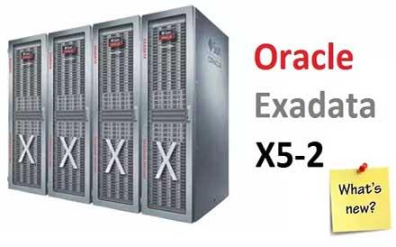 What is the main purpose of the Oracle assignment Exadata