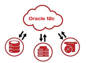 Oracle database 12c Cloud Consolidation capabilities