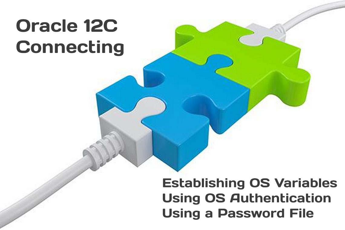 How to connect to Oracle Database 12C