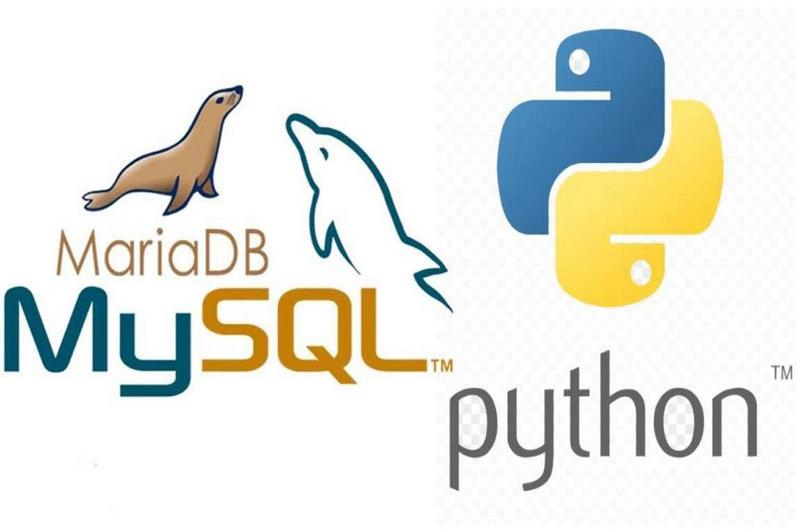 MySQL Connector/Python Installation manual