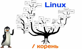 Linux: каталоги, ссылки и файлы