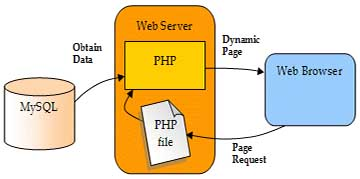 Use MySQL and PHP for Interactive Web Sites development