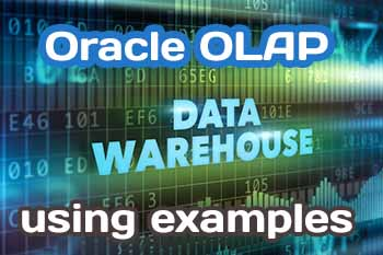 Oracle OLAP using Examples