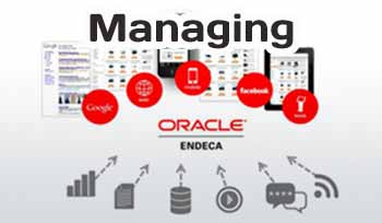 How to managin Oracle Endeca Server