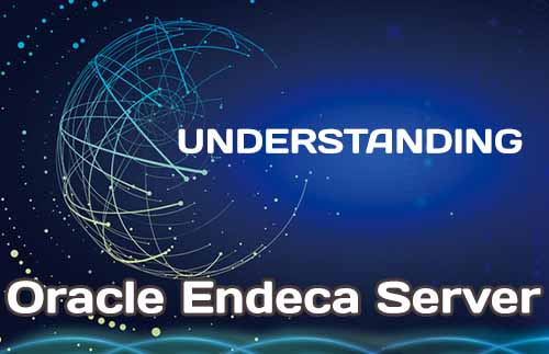 Oracle Endeca Server Understanding