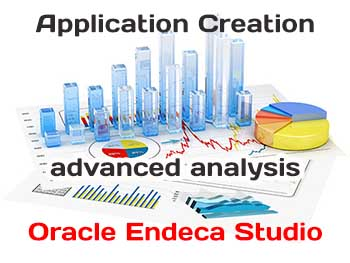 Oracle Endeca Studio Application Creation