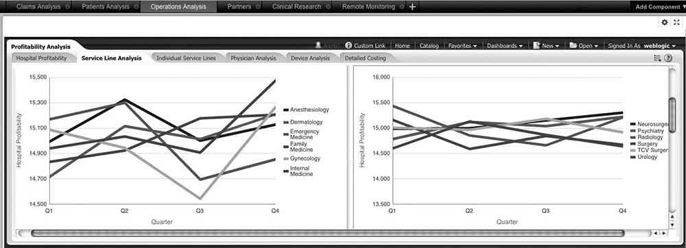 Embedded OBIEE profitability analysis dashboard