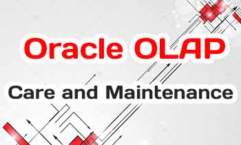 Oracle OLAP Care and Maintenance