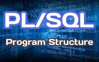 Describe the Basic PL/SQL Program Structure