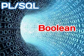 Тип данных BOOLEAN в PL/SQL