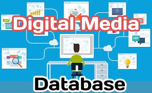 Database for Digital Media store and access