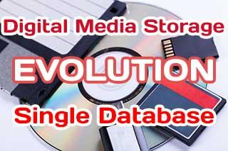 Databases for storing and managment Digital Media Storage