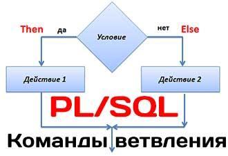 Команды условного перехода IF-THEN-ELSE в PL/SQL на примерах