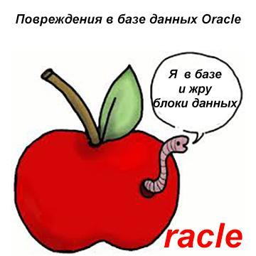 Поиск и восстановление блоков базы данных Oracle Restore point и применить ее
