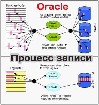Процессы записи в БД oracle dbwr lgwr журнал и контрольная точка Процесс записи dbwr и lgwrв в базе oracle блоки буферы контрольная точка и