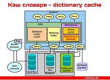 Кэш словаря (dictionary cache) в базе данных Oracle в деталях