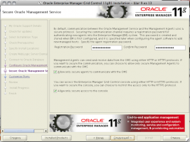 Oracle Enterprise Manager Grid Control 11gR1 Installation - Step 9 of 13